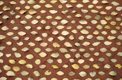 leaves-on-sand: leaves of Eucalyptus Platypus, 1 minute before the breeze