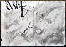 Hillside (ink on paper)