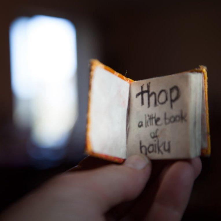 Belinda-Broughton-thop