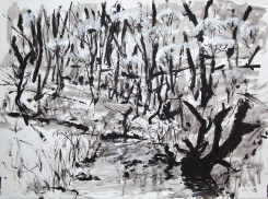 Torrens Creek, acrylic on paper, Belinda Broughton