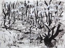 Torrens Creek, acrylic on paper, Belinda Broughton