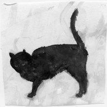 Belinda-Broughton__cat-rubbing-itself