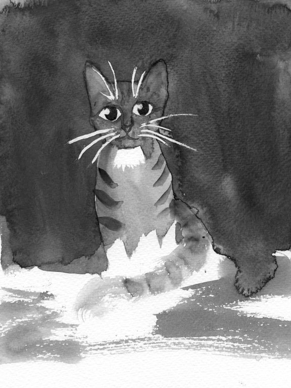 Belinda-Broughton_cat
