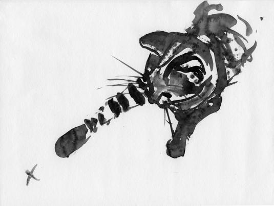 Belinda-Broughton_kitten-with-cross